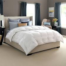 round bed comforter sets luxury bedding pacific coast bedding luxury bedding  bedding sets . round bed comforter sets ...