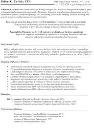 Sample Resumes Examples Inspiration Sample R Sum Chief Financial Officer Before Certified Resume