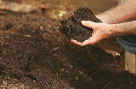 how to improve your soil 3 easy steps