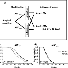 Crtx File Beneficial Effect Of Adjuvant Crtx On Survival Outcomes In