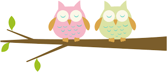 Image result for owl clipart school