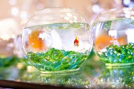 Fish Bowl Decorations For Weddings Goldfish Bowl Decoration Ideas Great Pictures 100 Fish Bowl 33