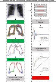 contour based lung shape ysis in