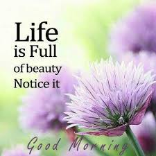 Good Morning Inspirational Quotes About Life Best Of Life Is Full Of Beauty Good Morning Inspirational Quotes Good