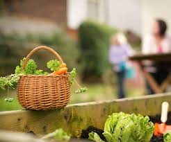 Small Picture 35 best Inspiration Kitchen Gardens images on Pinterest Edible