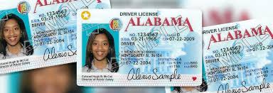 Over People — Political Reporter Licenses Aclu Alabama Driver's And Sues Transgender