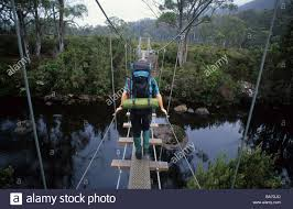 hiker walking over rope bridge over the narcissus river cradle  hiker walking over rope bridge over the narcissus river cradle mountain lake st clair national park tasmania