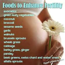 foods to eat when trying to conceive