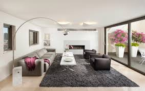 modern living room pictures. catchy modern area rugs for living room and pictures