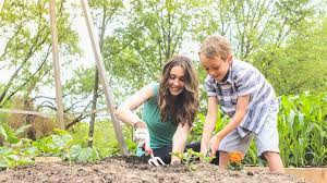 before you start a vegetable garden