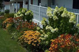 Mixed Flower Plants For Front Yard Landscaping Decoration