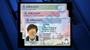 Ktvz - Oregon Design Card Id Driver Rolling New License Out