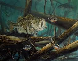 largemouth bass painting largemouth bass by scott thompson