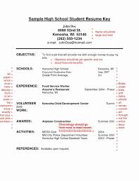 Resume Pdf Free Download Free Fill In Resume Template Blank Examples The Bio Templates 59