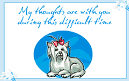 sympathy card pet printable pet sympathy pet loss condolence greeting cards