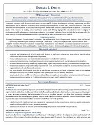 Resume Examples For It Professionals Professional Resume Examples Salt Lake City Empire Resume