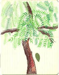 neem tree essay neem tree painting natureconservation in neem tree painting natureconservation in
