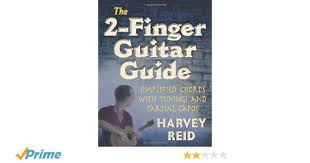 The 2 Finger Guitar Guide Simplified Chords With Tunings