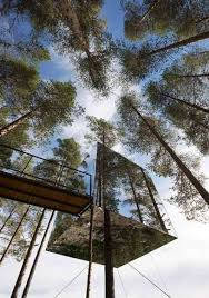 Treehouse Masters Mirrors Cube Hotel Sweden Amazing Work Of Art Throughout Perfect Design