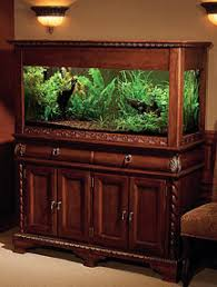 furniture aquarium. showcase your aquarium with a wood stand furniture