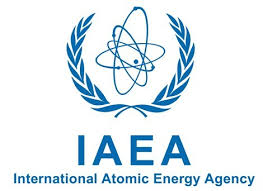 Image result for international atomic energy agency