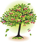 fruit tree clipart. Fine Fruit Fruit Tree With Leafs And Cherry Isolated On White To Fruit Tree Clipart F