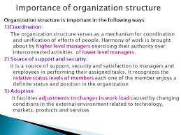 Organizational Structure And The Role Of College Paper