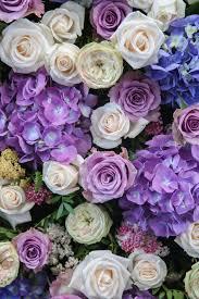 Flower Wall Flower Wall Mcqueens Blog