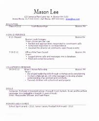 Teenage Resume Examples Delectable Teenage Resume Sample Teenage Job Resume Examples Examples Of