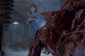 Image result for the fly 1986 ending