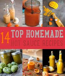 top 14 hot sauce recipes diy projects