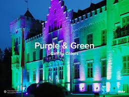 Purple Green Catchy Colors Purple Green Flickr Blog