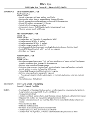 Mds Coordinator Resume Samples Velvet Jobs