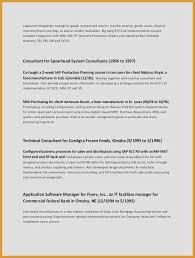 Resume Application Magnificent Application Consultant Resume Expert Consultant Resume Sample