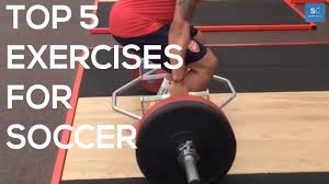 top 5 weight training exercises for