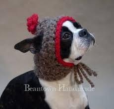 Crochet Dog Hat Pattern Adorable Crochet Dog Hat Pattern Ideas Best Collection Dog Ideas