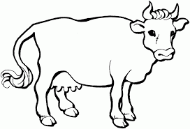Small Picture Cow Coloring Pages 14439 Label Angus Cow Coloring Pages Baby Cow
