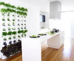 indoor vertical herb garden. Contemporary Vertical Herb Wall For Indoor Vertical Herb Garden E