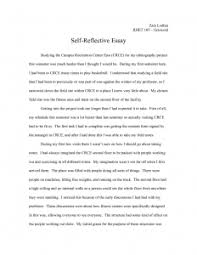 learning english essay example reflective essay ideas writing a  essay computer science essays essay for students of high school also