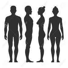 男と女のベクトル シルエット前と側面図体の男性と女性のイラスト イラスト