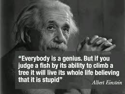 best sun gazing quotes images words drawings everybody is a genius but if you judge a fish by its ability to climb a tree it will live its whole life believing that it is stupid