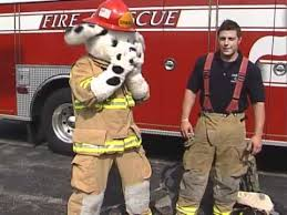 sparky the fire dog. fire fighter gear with sparky the dog n
