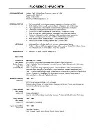 simple sample of modern resume large size