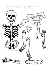 Musculoskeletal system diagram without labels download skeletal system coloring pages cheap axial skeleton coloring page