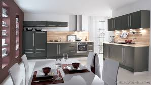 Small Picture Pictures of Kitchens Modern Gray Kitchen Cabinets