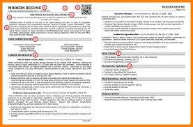 12 Best Professional Resume Template Letmenatalya