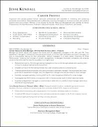 Best Professional Resumes Professional Resume Pdf Brilliant Ideas Of Professional Resume