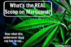 Halucinogen weed teen craze