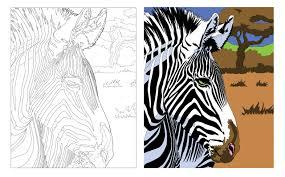 Amazon Fr Japon 100 Coloriages Christophe Alexis Perez Livresllll L