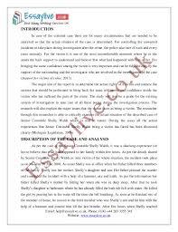 how to write a criminal law essay how to write a criminal law paper writers per hour